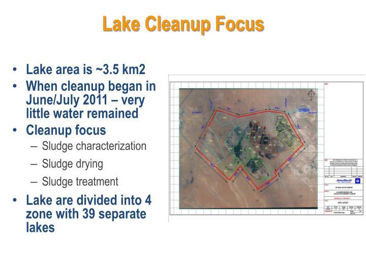 Lake Cleanup Focus