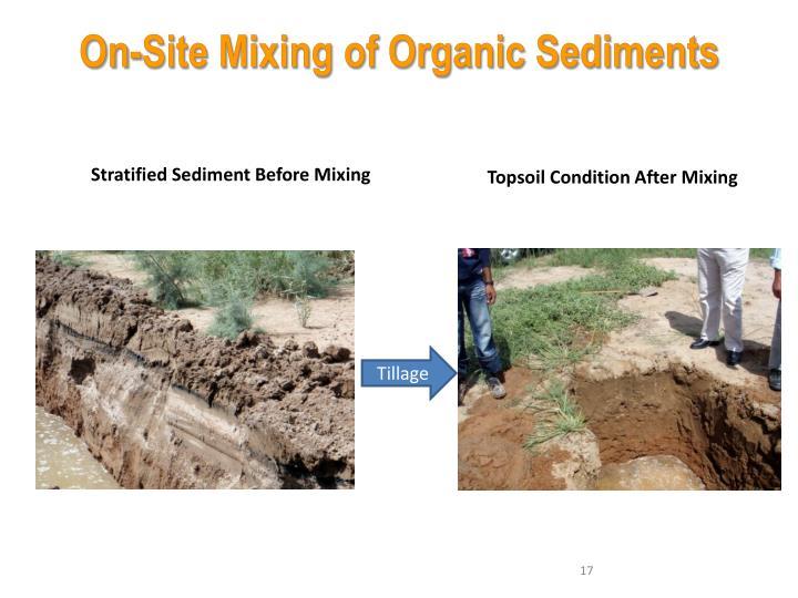 On-Site Mixing of Organic Sedimen