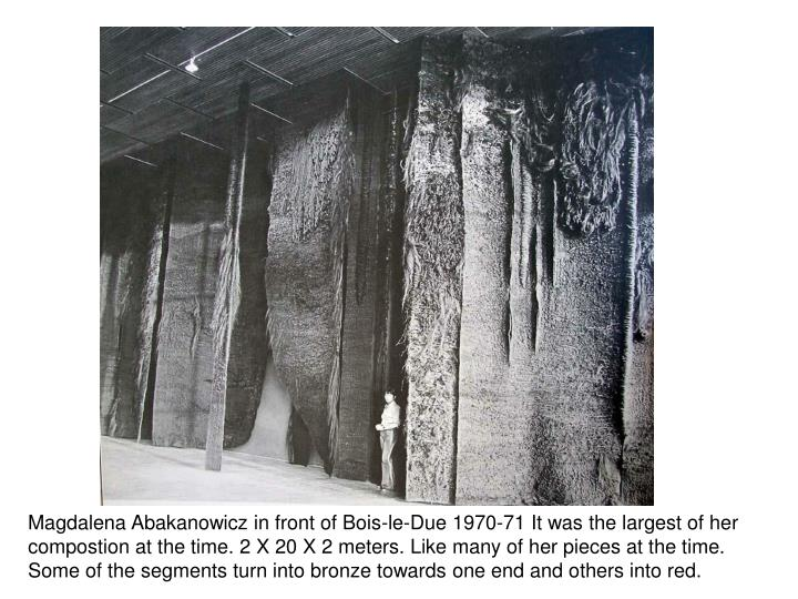 Magdalena Abakanowicz in front of Bois-le-Due 1970-71 It was the largest of her compostion at the time. 2 X 20 X 2 meters. Like many of her pieces at the time. Some of the segments turn into bronze towards one end and others into red.
