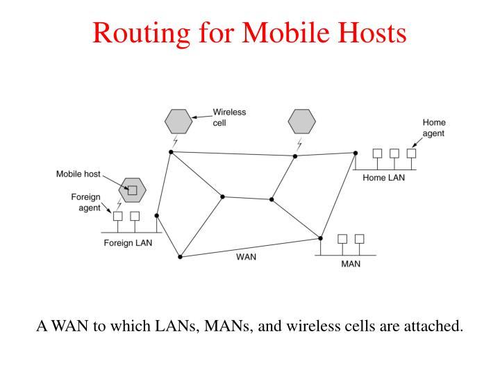 Routing for Mobile Hosts
