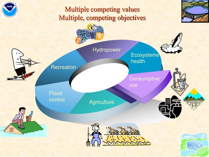 Multiple competing values