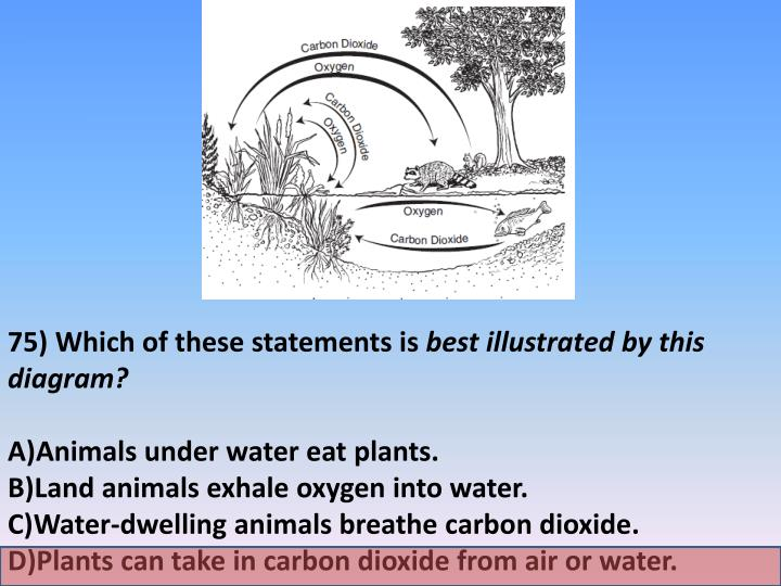 75) Which of these statements is