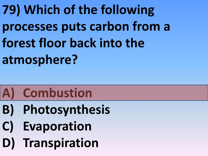 79) Which of the following processes puts carbon from a forest floor back into the atmosphere?