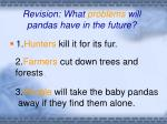 revision what problems will pandas have in the future