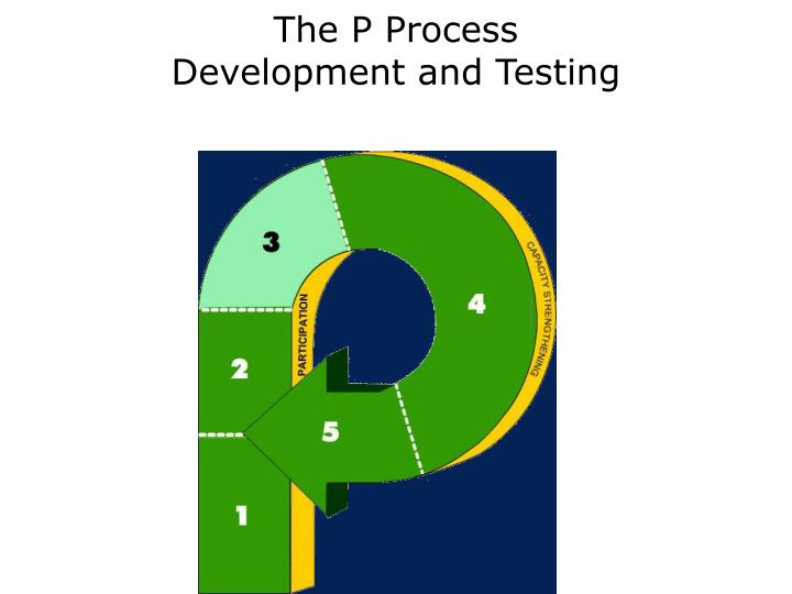 the p process development and testing n.