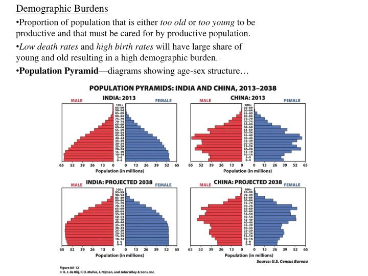 Demographic Burdens
