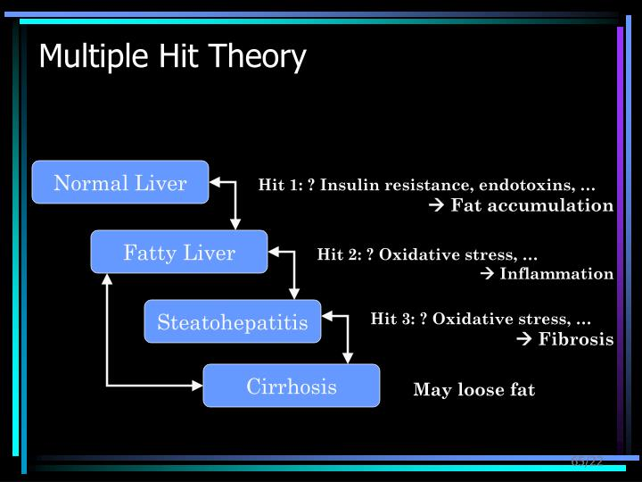 Multiple Hit Theory