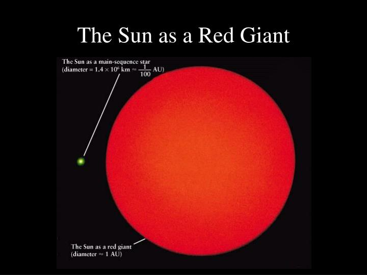 The Sun as a Red Giant