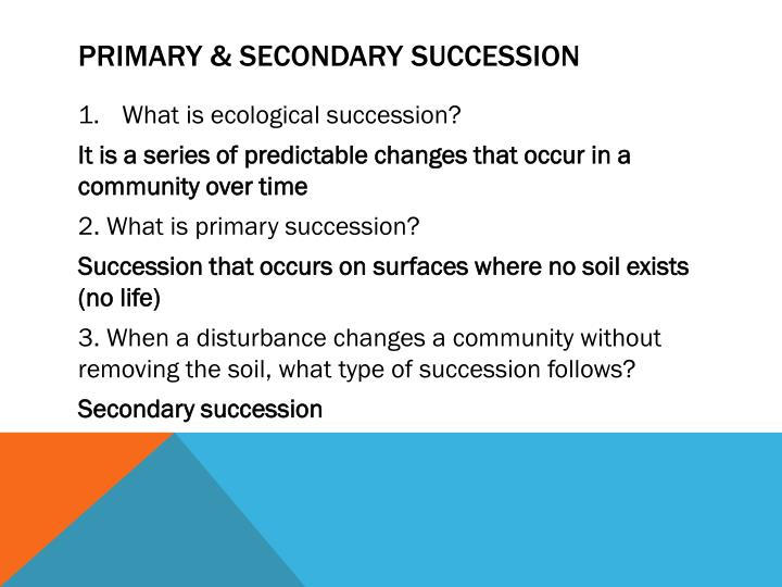 Primary secondary succession