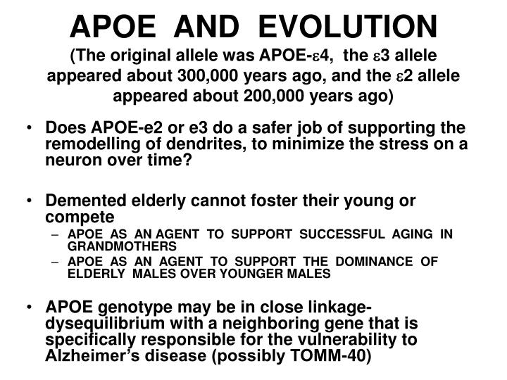 APOE  AND  EVOLUTION
