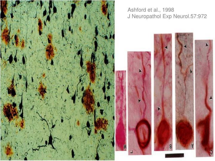 Ashford et al., 1998