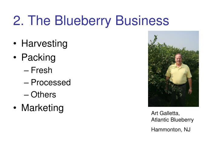 2. The Blueberry Business
