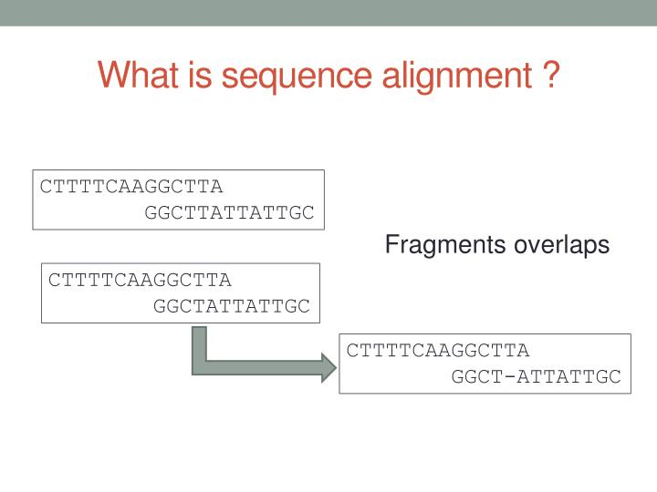 What is sequence alignment ?