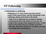 nt fellowship
