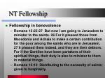 nt fellowship2