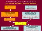 dual pathways to self injury anxiety depression kendine zarar vermede ikili yol kayg depresyon