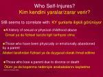 who self injures kim kendini yaralar zarar verir1