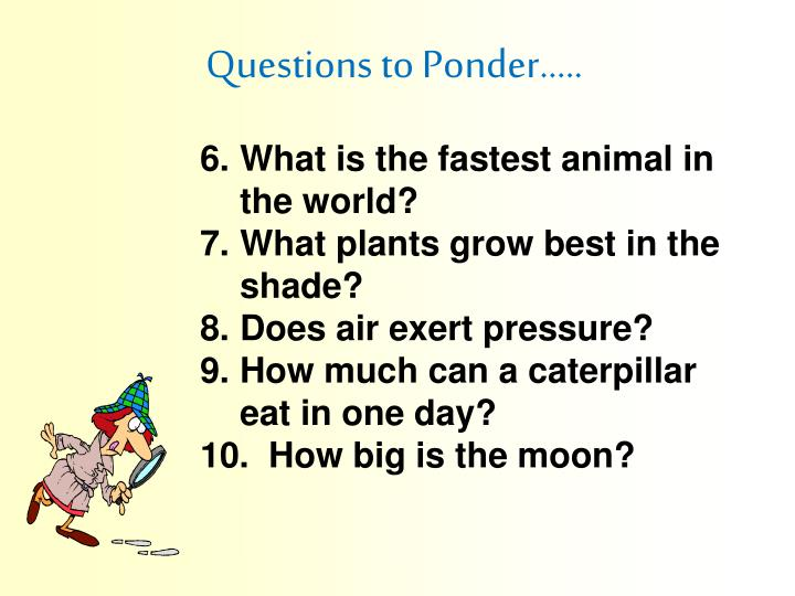 Questions to Ponder…..