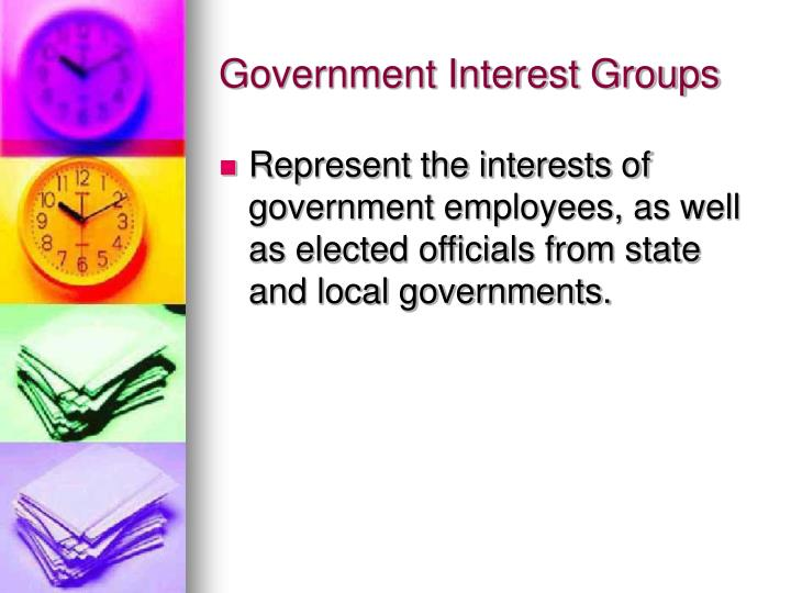 Government Interest Groups