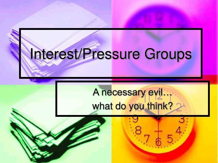 Interest/Pressure Groups