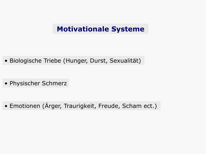 Motivationale Systeme