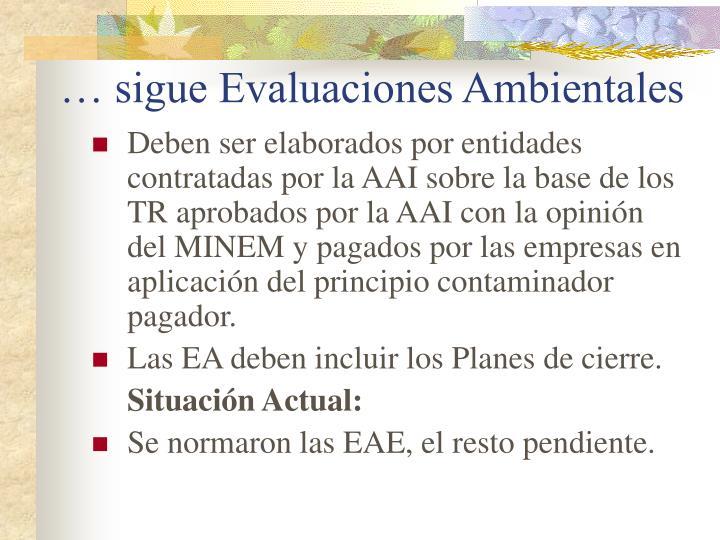 … sigue Evaluaciones Ambientales