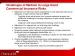 challenges of medium to large sized commercial insurance risks4