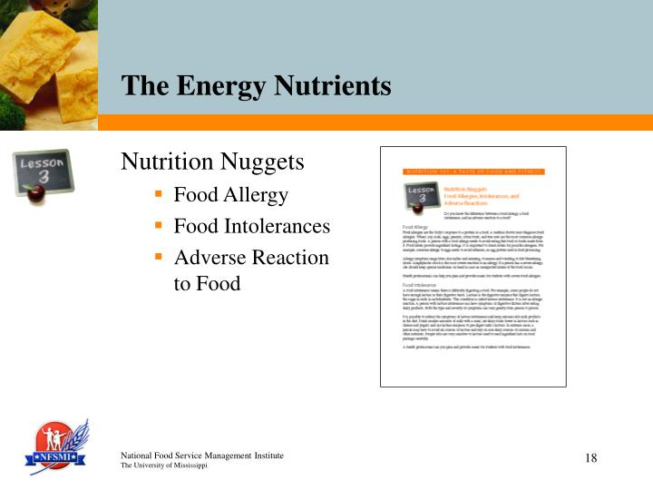 Nutrition Nuggets