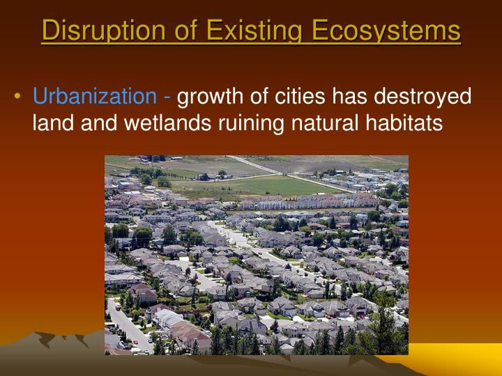 Disruption of Existing Ecosystems