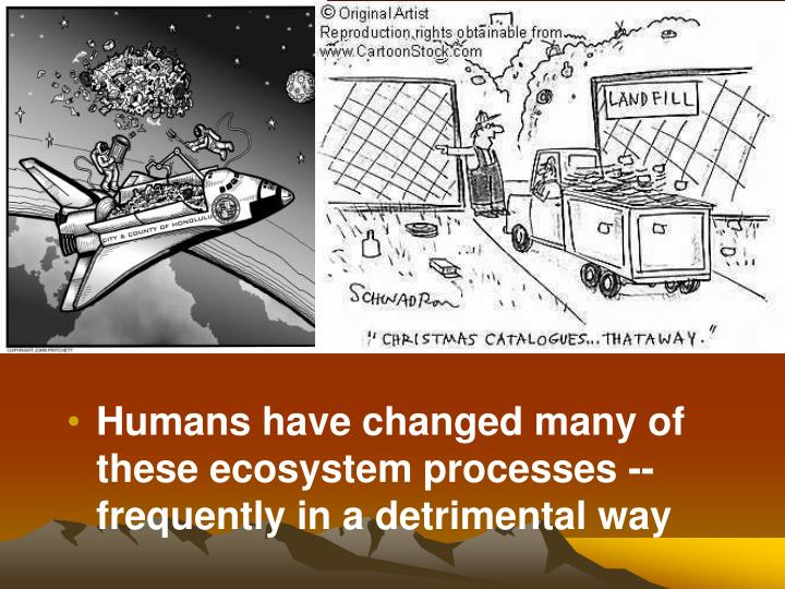 Humans have changed many of these ecosystem processes -- frequently in a detrimental way