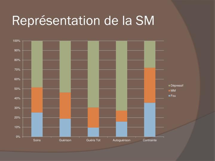 Représentation de la SM