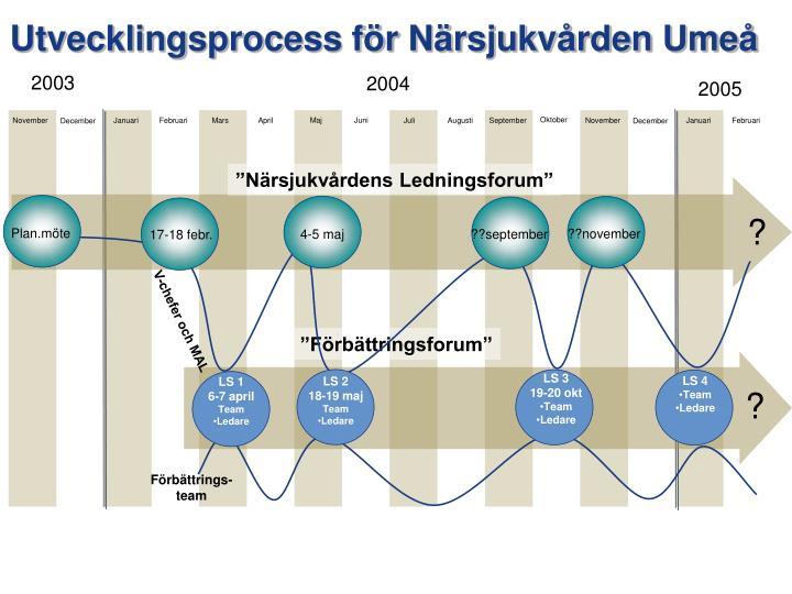 Utvecklingsprocess för Närsjukvården Umeå