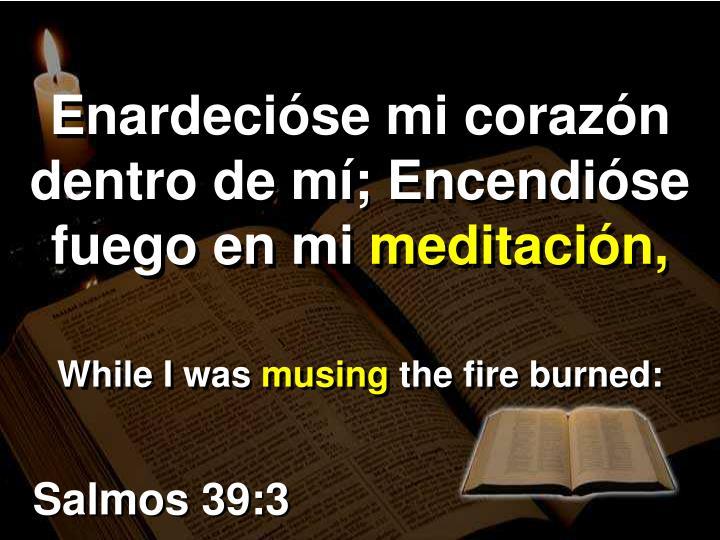 Enardecióse mi corazón dentro de mí; Encendióse fuego en mi