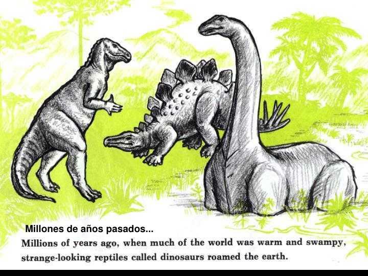 Millones de años pasados...