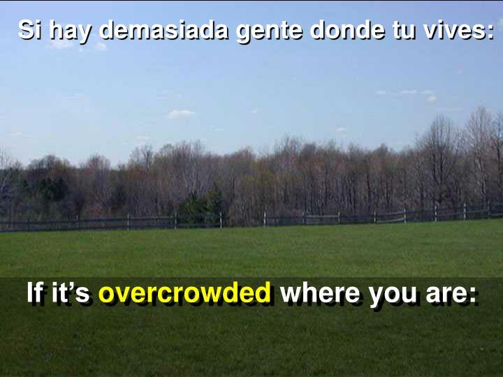 Si hay demasiada gente donde tu vives: