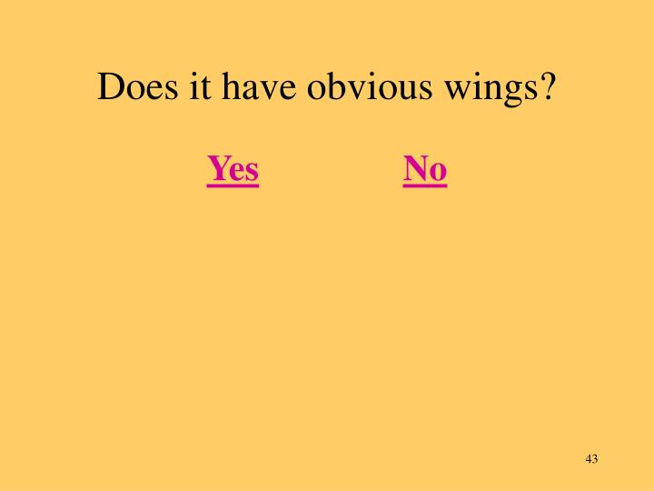 Does it have obvious wings?