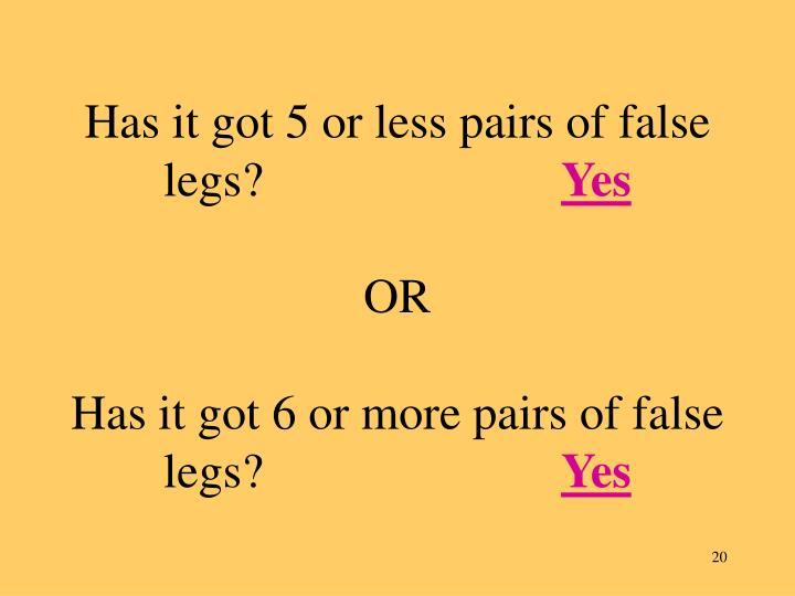 Has it got 5 or less pairs of false legs?