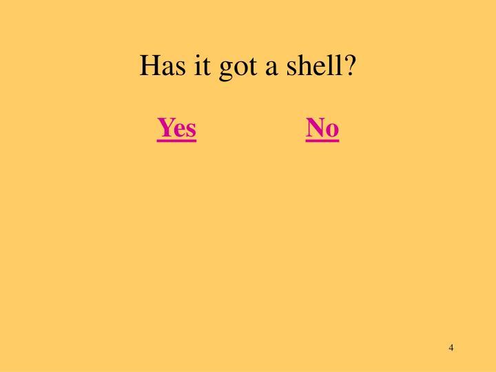 Has it got a shell?
