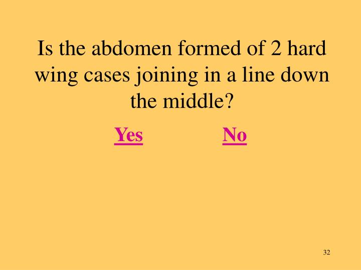 Is the abdomen formed of 2 hard wing cases joining in a line down the middle?