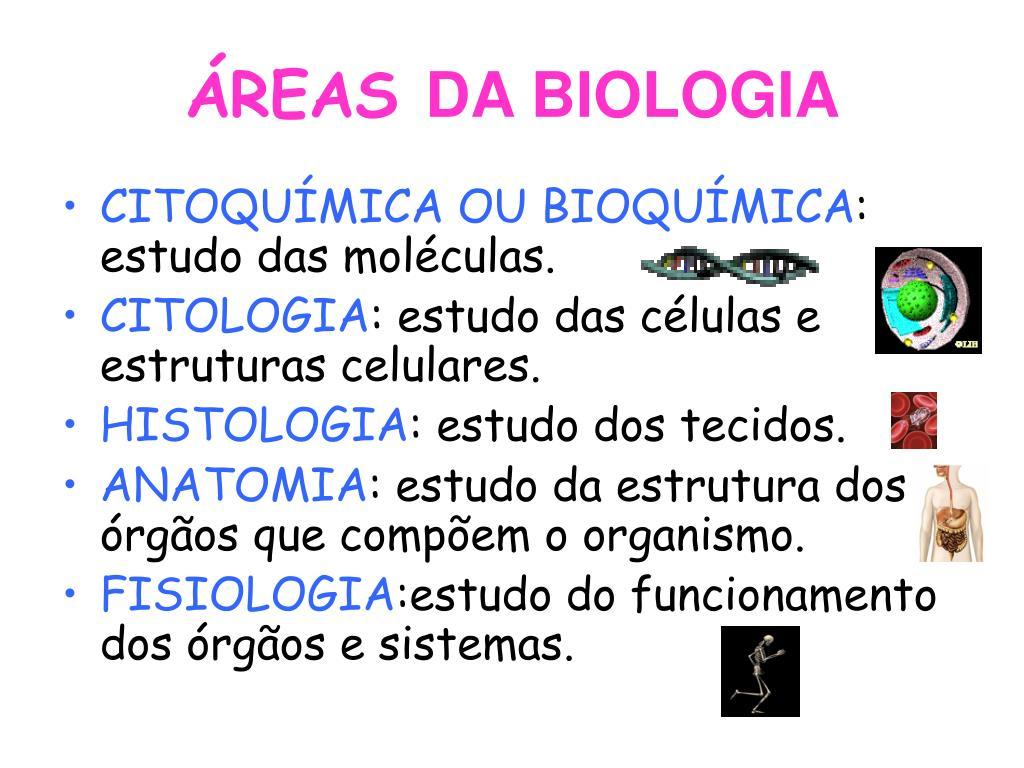 Ppt Introdução á Biologia Celular Powerpoint Presentation