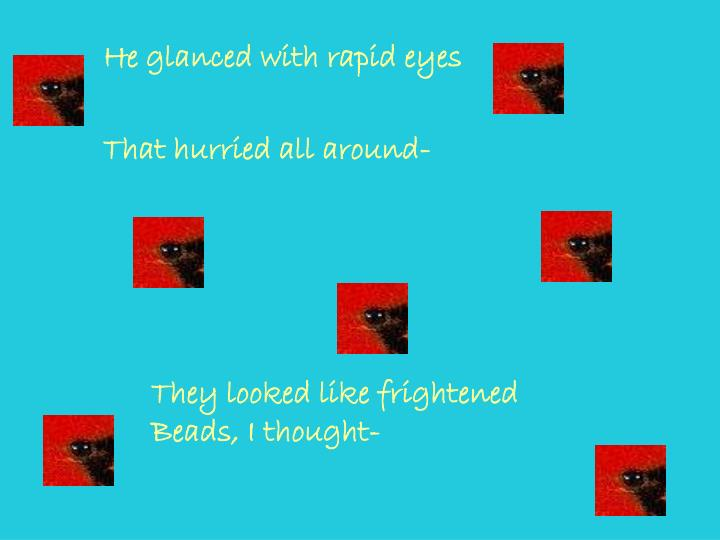He glanced with rapid eyes