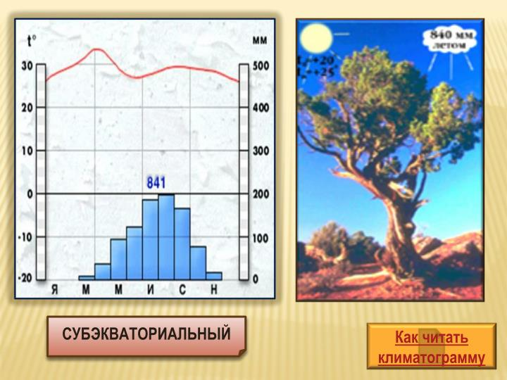 Как читать климатограмму