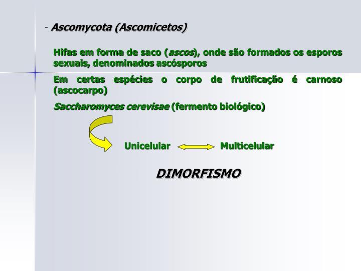 Unicelular                   Multicelular