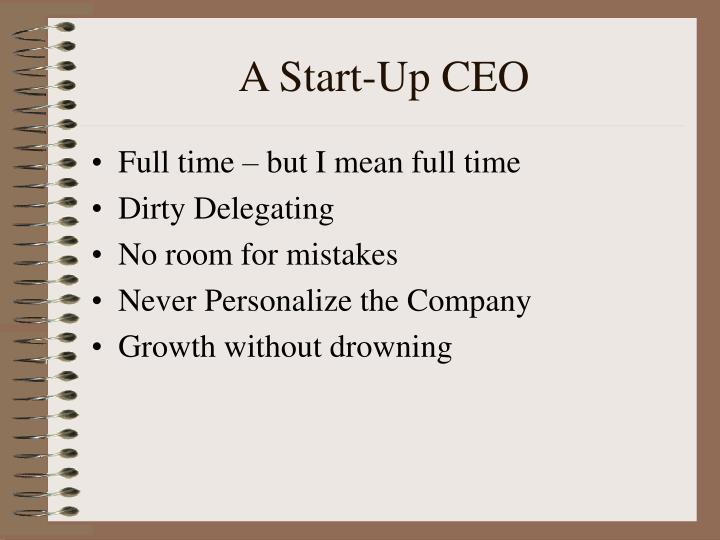 A Start-Up CEO