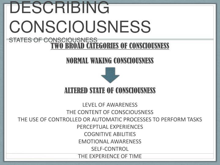 DESCRIBING CONSCIOUSNESS