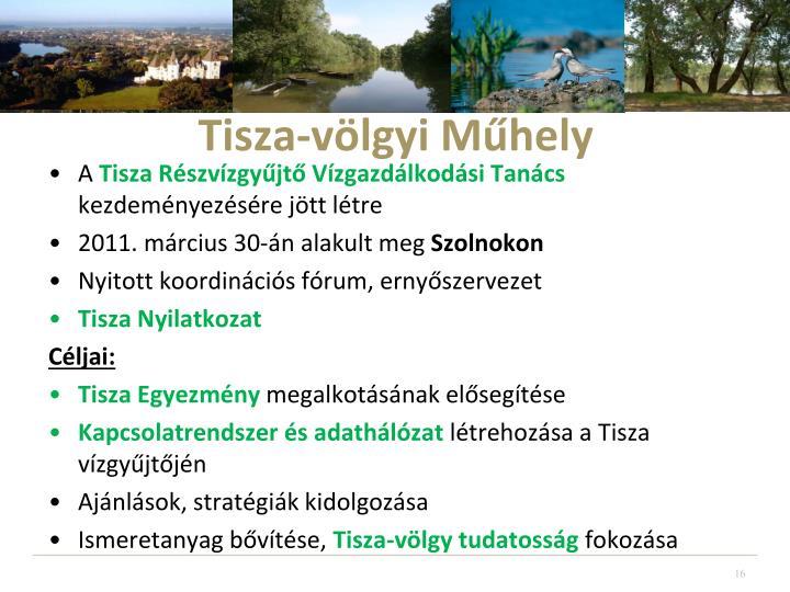 Tisza-völgyi Műhely