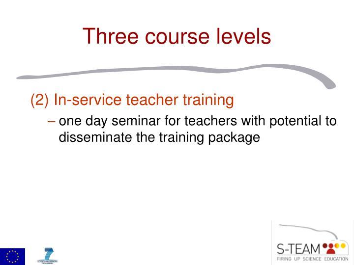 (2) In-service teacher training