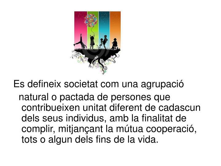 Es defineix societat com una agrupació