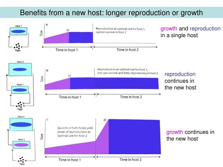 Benefits from a new host: longer reproduction or growth