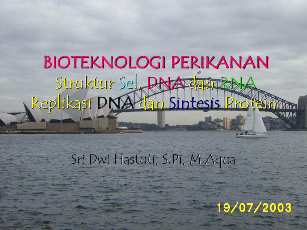Ppt Bioteknologi Perikanan Struktur Sel Dna Dan Rna Replikasi